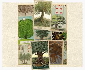 Зачение карты Ленорман: Дерево
