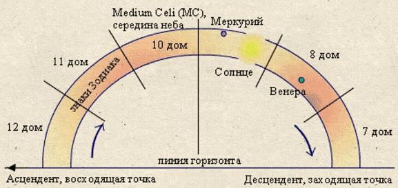 Что такое середина неба (МС, Медиум цели, Зенит в астрологии)
