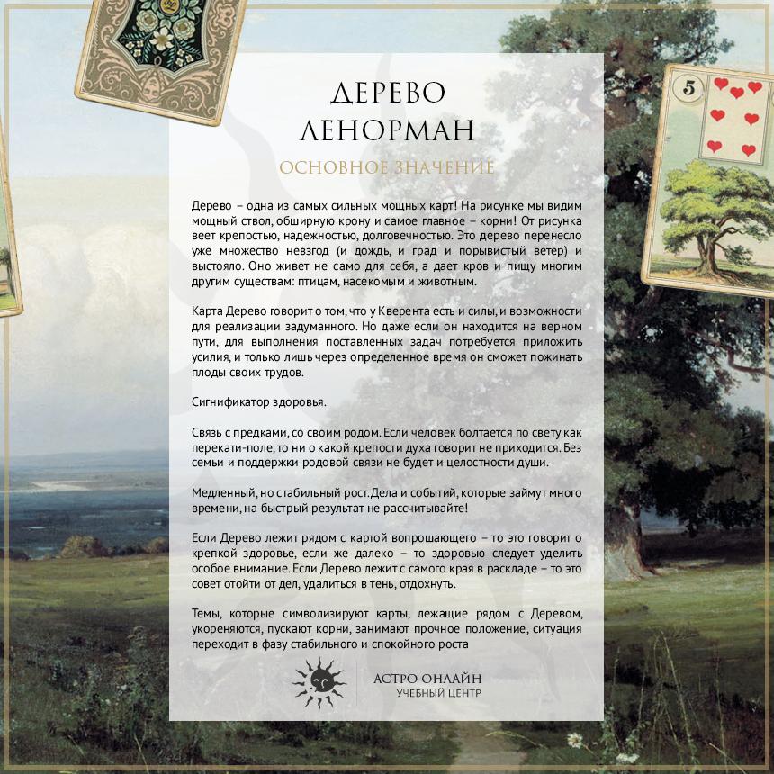 Карточки по Ленорман: Дерево