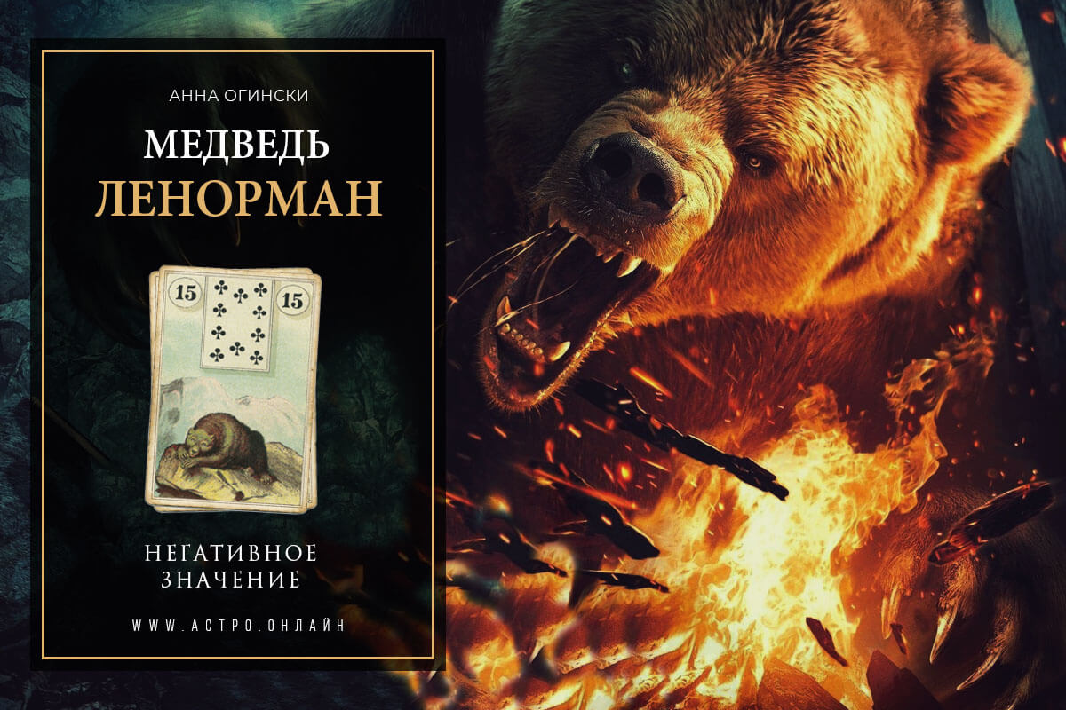 Негативное значение по карте Медведь в Ленорман