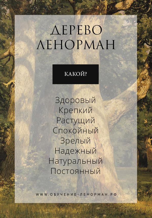 Карта Дерево в Ленорман: Какой?