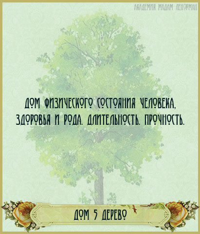 Дом Дерева в Большом раскладе Ленорман