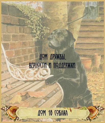 Дом Собаки в Большом раскладе Ленорман